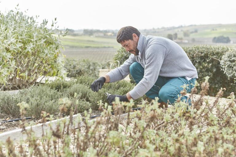 La Cucina Italiana | Giardiniera in Erbe
